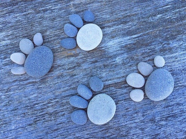 stones arranged in paw shapes
